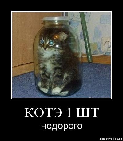 http://freemanager.ucoz.com/_ph/2/2/453521385.jpg
