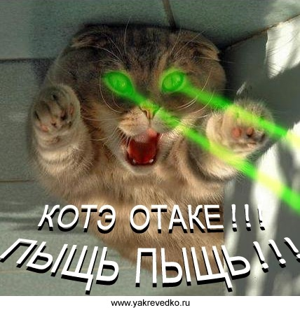 http://freemanager.ucoz.com/_ph/2/2/818789484.jpg