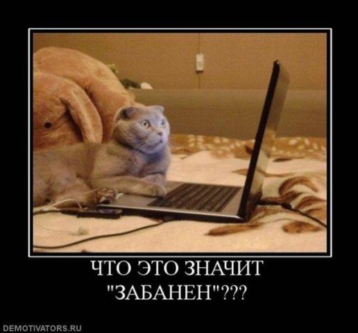 http://freemanager.ucoz.com/_ph/3/279427169.jpg