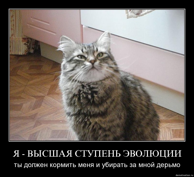 http://freemanager.ucoz.com/_ph/3/826330274.jpg